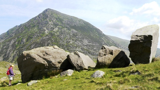 Fig. 2. Photograph of the 'Darwin Idwal boulders' as viewed looking towards the north east. Note how the left hand boulder (E) does not have the angularity of the others (A – D). Llyn Idwal is in the background.