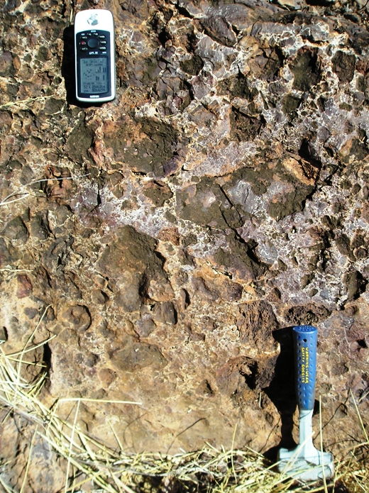 The volcanic breccia (Blackfella Rockhole member) deposited during the later part of the volcanic eruptions. This breccia indicates widespread explosive eruptions towards the end of the LIP volcanism. Photo Lena Z. Evins