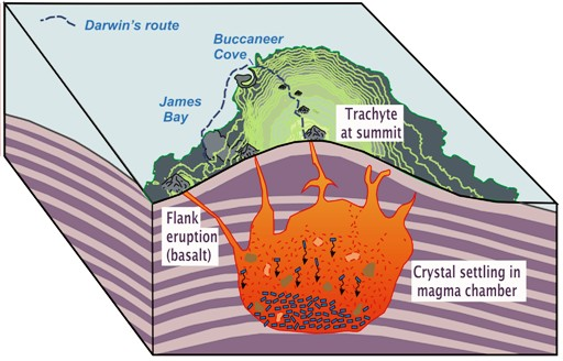 Schematic illustration to show how Darwin might have envisioned magmatic processes beneath a volcanic island, based on his findings on James Island.