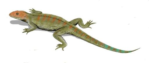 A reconstruction of Hylonomus lyelli, the earliest reptile, discovered by William Dawson at Joggins in 1859. Note the five slender toes on each foot (courtesy of Arthur Weasley)