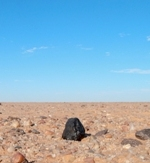 The Almahata Sitta meteorite #15 in situ on the desert floor during its find on 8 December2008, much as it fell on October 7 earlier that year. Photo: P Jenniskens, SETI Institute.