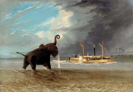 """Elephant in the Shallows of the Shire River, the steam launch firing"", T Baines, 1859, oil on canvas, © Royal Geographical Society, Baines 29."