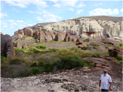 Outcrops of the fluvial sediments of the Silurian Jaicós Formation in the Capivara National Park on the SE margin of the Parnaiba basin. (Famous Brazilian geophysicist, Vander Andrade, in the foreground).