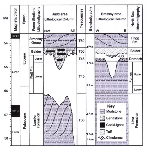 Fig. 2 Stratigraphical columns showing uplift of area of Scotland at 55 million years, first (and more) to west and then a little later (and less) to the east. (From Rudge & others, 2008.)