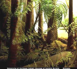 Carboniferous forest (image from Earth History Resources)