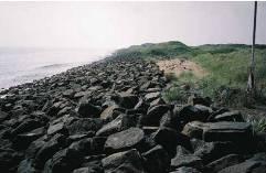 Geological Society Gabbro Uses
