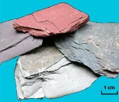 Geological Society - Metamorphic Rocks