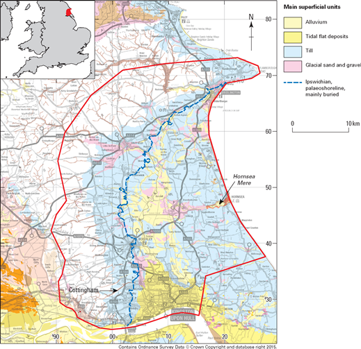figure 1150000 scale superficial geology map of the holderness 3d geological model area red which covers 1280km2 from kingston upon hull to