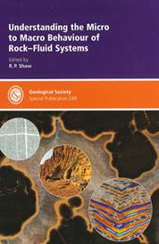 Understanding the Micro-to-Macro Behaviour of Rock-Fluid Systems