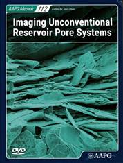 Imaging Unconventional Reservoir Pore Systems