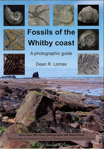 Fossils of the Whitby Coast