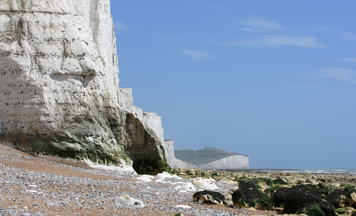 July: Seven Sisters & Beachy Head, East Sussex, England - Anna Saich