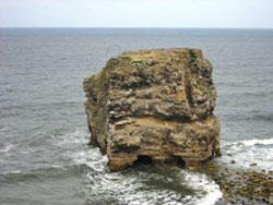Figure 6.  Marsden Rock