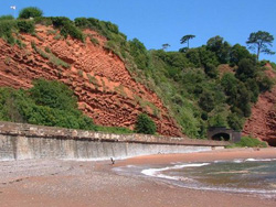 Dawlish Cliffs
