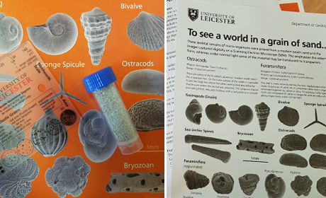 The world in a grain of sand.. Microfossils kit kindly supplied by Leicester University