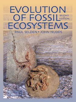 chemical fundamentals of geology and environmental geoscience wiley desktop editions