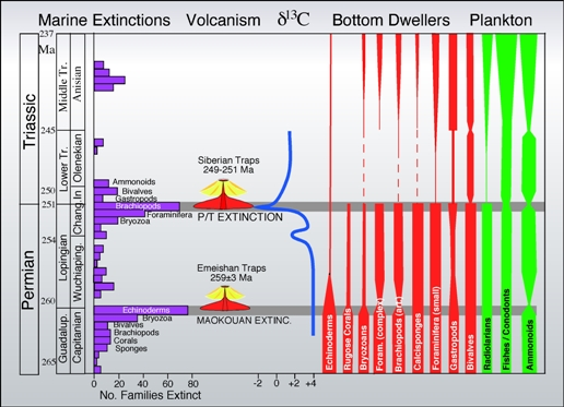 analyze the impact that the extinction The pliocene marine megafauna extinction and its impact on functional diversity running the extinction rate analysis using a subsampled data set that included.